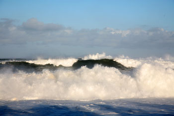 waimea bay surfing